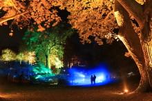 Besöksrekord för årets Ljusstämning