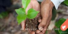5 hållbarhetstrender fram till 2020