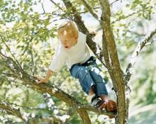 Børn forsikres mod både sygdom og ulykke