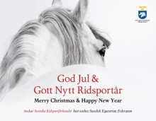 God Jul och Gott Nytt Ridsportår!