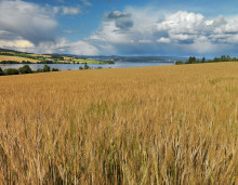 Lite krutt i regjeringas jordvernstrategi
