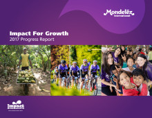 2017 Impact For Growth Report