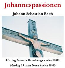 Tre körer och en orkester ger Bachs Johannespassionen i två kyrkor