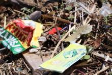 Plastforurensning – hva er egentlig greia?