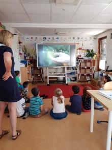 Succé med interaktiva whiteboards som hjälpmedel på skola och förskola.