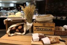 En natt på Sheraton Stockholm Hotel