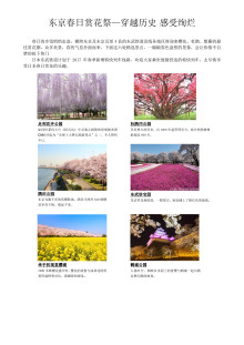 [CHINESE] Cherry Blossoms, Wisteria, and Other Springtime Flower-Viewing Information