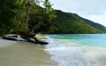 Gør Vest Papua til verdens første naturbeskyttede provins