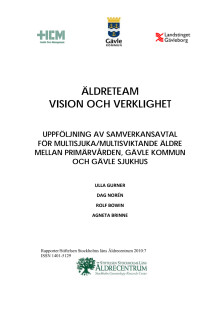 Äldreteam - Vision och verklighet