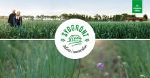 För SydGrönt är det naturligt och självklart att arbeta hållbart – på naturens villkor.