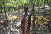 Mondelēz International podporuje ochranu tropických lesů v západní Africe