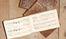 Poesisommar på Skoklosters slott - en resa i musik och ord