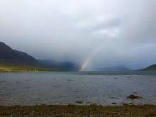De vilde Vestfjorde