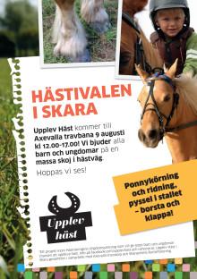 Upplev Häst kommer till Hästivalen i Skara