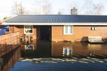 Seminarium i Almedalen: Kan vi strunta i klimatanpassning?