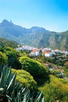 Nära 9 av 10 svenskar har någon gång besökt Kanarieöarna