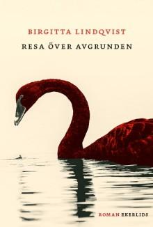 Ny bok: Resa över avgrunden av Birgitta Lindqvist