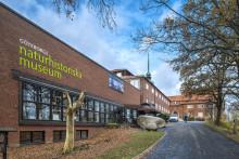 Yttre renovering av Göteborgs Naturhistoriska museum
