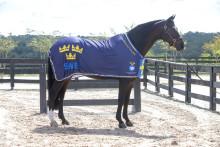 Horseware rustar svenska VM-hästarna
