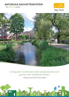 Naturliga dagvattensystem