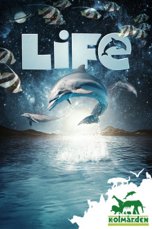 Pressvisning av delfinshowen Life
