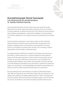 Besprechung der Werke von Bernd Sannwald durch Frau Dr. Rollmann-Borretty