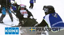 Ny rapport konstaterar hur svenska idrottsanläggningar brister i tillgänglighet