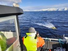 Robot for kartlegging av havbunn