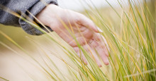 Spelar miljömärkning någon roll när du väljer skrivare med miljön i fokus?