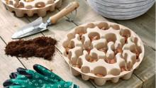 Bakker presenterar exklusivt sortiment av blomsterlökar för lasagneplantering