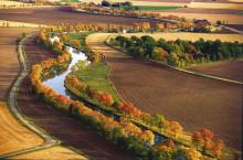 Ny kampanj ska rädda världens längsta trädallé