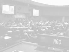 Concord deltar i FN:s högnivåmöte om hållbar utveckling