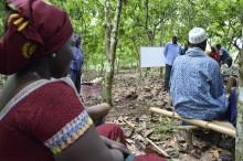 Mondelēz International publicerar hållbarhetsrapport för 2014