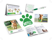 Mobility Matters materials