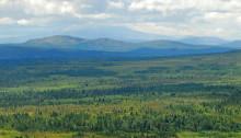 Mindre pengar till natur- och viltvård i Dalarna