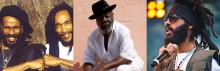 Första artisterna klara till Furuvik Reggaefestival 2013