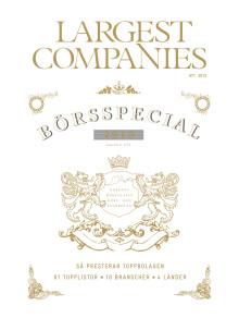 Largest Companies - Börsspecial 2013