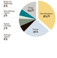 Hjärtrapporten 2015: Hjärt-kärlsjukdom vanligaste dödsorsaken