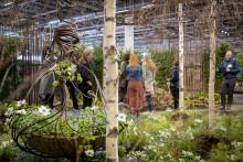 Årets idéträdgårdar - en rolig kärleksfest där inspiration frodas och drömlika scener uppstår