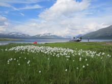 Attraktive hyttetomter i Troms er nå fordelt