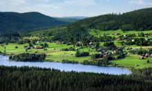 Skogliga scenarier gynnar den lokala diskussionen