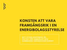 Varberg Energis styrelse deltar i Bodecker Partners styrelseutbildning