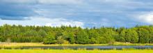 70 miljoner till forskning om biomassa