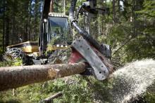 Skatte- och ekonomikvällar för skogsägare i Rättvik och Leksand