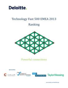 Technology Fast 500 EMEA 2013 Ranking