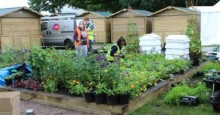 Mitie and Phoenix School win gold at Hampton Court Flower Show