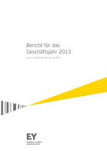EY Bericht für das Geschäftsjahr 2013