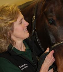 Bot för häst med skadat öga