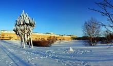 Två forskare vid Umeå universitet utses till Wallenberg Scholars
