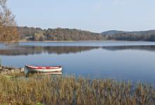 Ny HaV-rapport: De flesta ekosystemtjänster från svenska sötvatten är påverkade